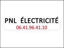 vignette2017_partenaire_pnl_electricite